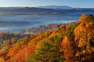 Fall in the Southern Appalachians-(ZF-8255-71990-1-003)